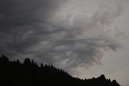 2008_0706kumo.jpg