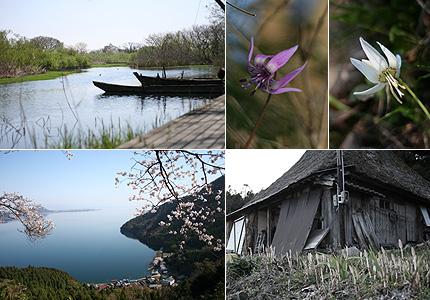 2009_0411kohoku.jpg