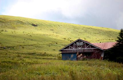 2010_1028house.jpg