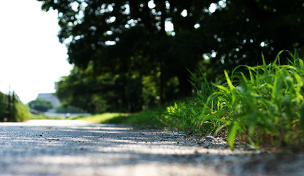 2011_0704road.jpg