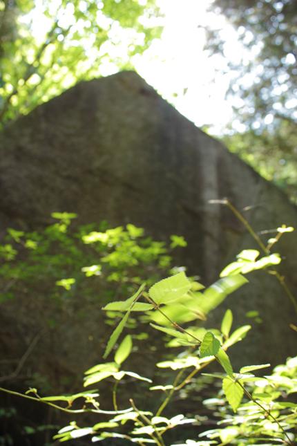 2012_0516rock.jpg
