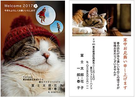 2016_1029.jpg