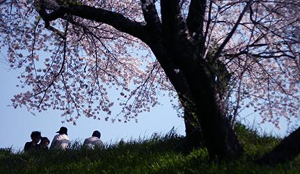 2009_0408_hanami.jpg