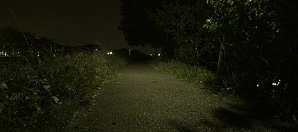 2009_1107road.jpg