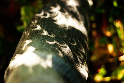 2012_0521_nissyoku3.jpg