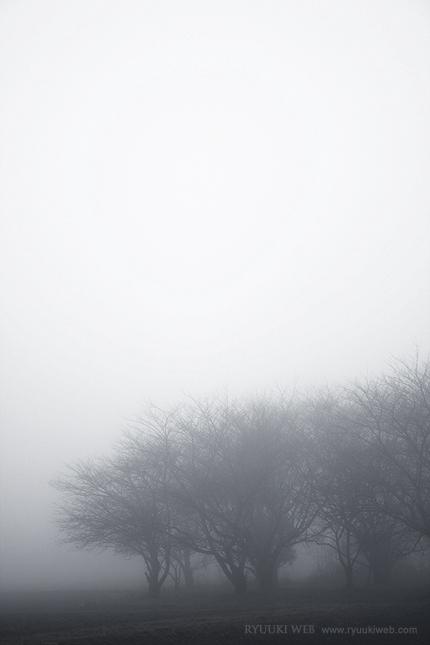 2013_0203_fog.jpg